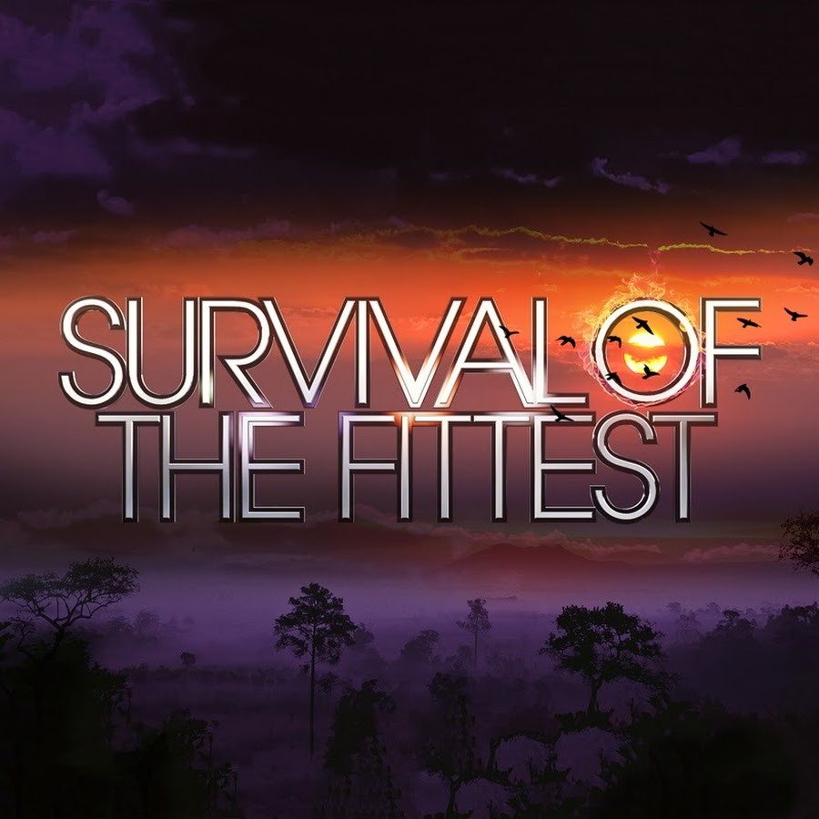 Survival Of Fittest >> Survival Of The Fittest Youtube