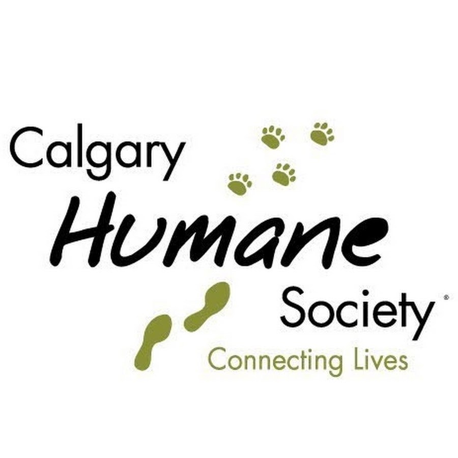 CalgaryHumaneSociety - YouTube