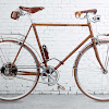 velocipede-fogliaverde.ch from Switzerland