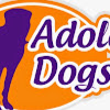 Adolescent Dogs TV