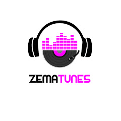 ZemaTunes Net Worth