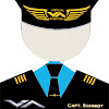 Virtual Aviation FlightSim Store