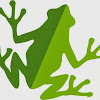 Glass Frog Marketing