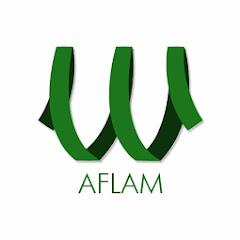 ElWady Aflam Net Worth