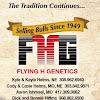 Flying H Genetics -NE/MO