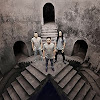 Andra and The Backbone Official