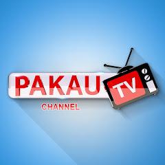 Pakau TV channel Net Worth