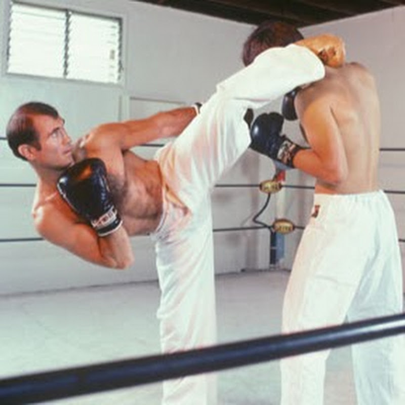 KICKFIGHTING FILMS (ultimate-martial-arts)