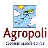 nuova cooperazione organizzata