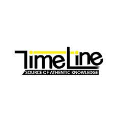Timeline Net Worth