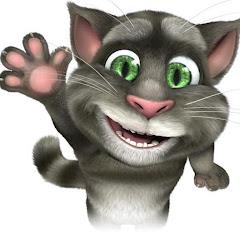 Mèo Tôm hài hước Net Worth