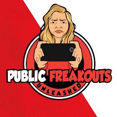 Public Freakout Net Worth