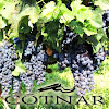 Cotnar Winery