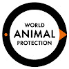 World Animal Protection UK