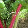 Organicplants.co.uk