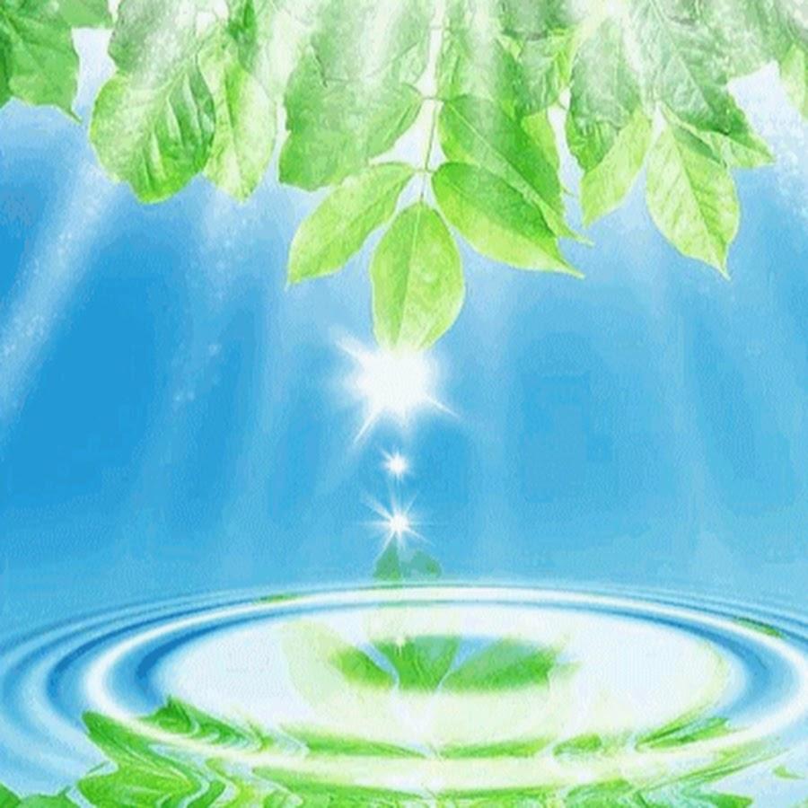 Анимация по экологии картинки, открытку
