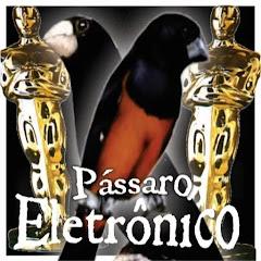 PassaroEletronico