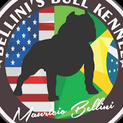 Mauricio Bellini - Bellini