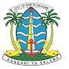Dar es Salaam City Council