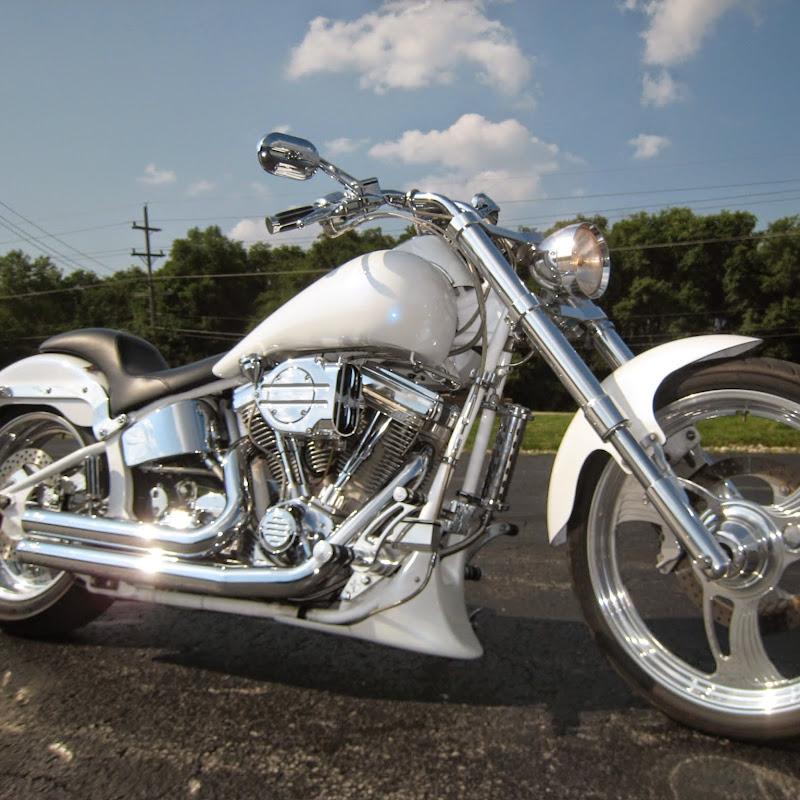 88a178cba76 Schwinn Chopper Ride   FunnyCat.TV