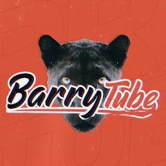 BarryTube Net Worth