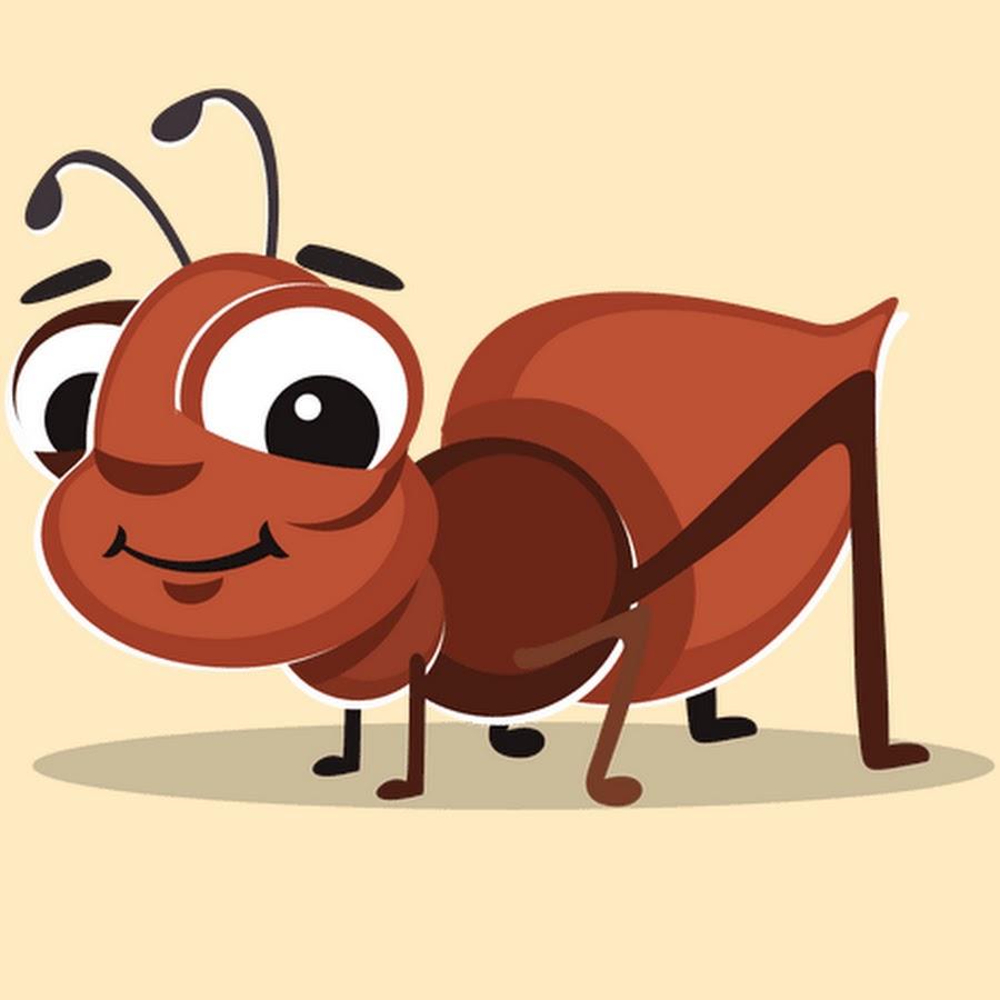 Праздником курбан-байрам, смешные муравьи картинки