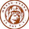 Orang-Utans in Not e.V. (Orangutans in peril)
