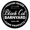 Black Cat Barnyard