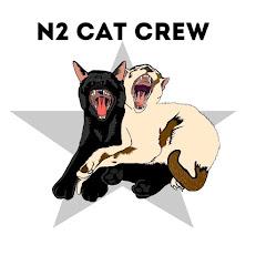 N2 Cat Crew Net Worth