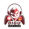 Digu Casillas