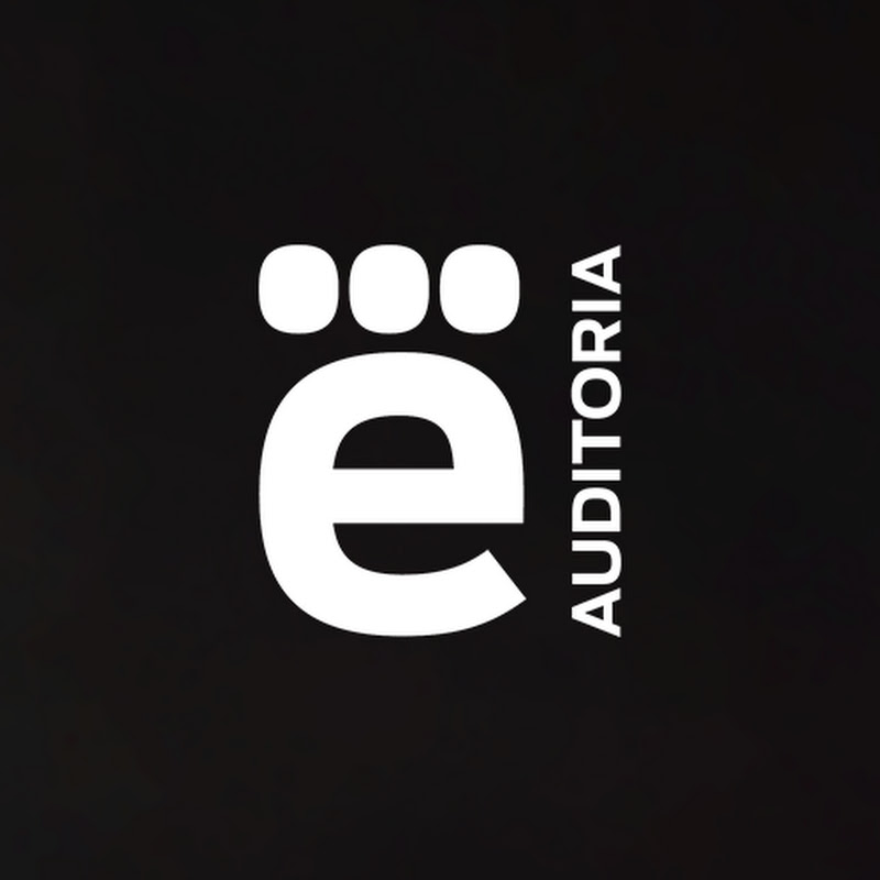 e-Auditoria