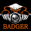 Badgers Business Solutions