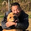 ポチパパ ちゃんねる【保護犬達の楽園】