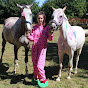 TwoGreyMares (my-equestrian-obsession)