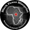 Black Power Blueprint