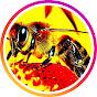 Ορεινή Μέλισσα
