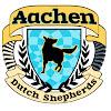 Aachen Dutch Shepherds