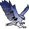 Hawk Technology Ltd