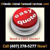 Orlando Animal Removal Services