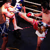 The Real Muay Thai Boxing Channel