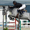 Life of Showjumping