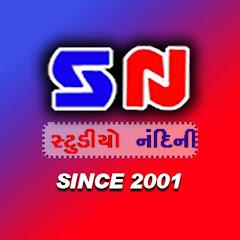 Studio Nandini Junagadh Net Worth