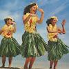 The Hula Hula's