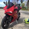 Black Rider 99