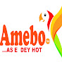 Amebo TV2 (amebo-tv2)
