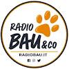 Radio Bau