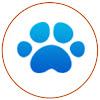Oak Park Veterinary Clinic