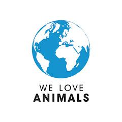 Animal Videos by BlackBox.Global
