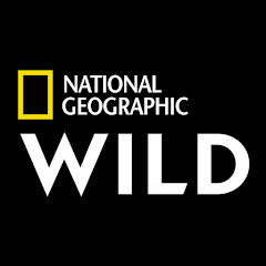 Nat Geo WILD Net Worth