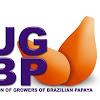 UGBP Papaya